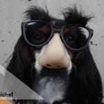 Inspirace: Komunikace pojišťoven, která baví